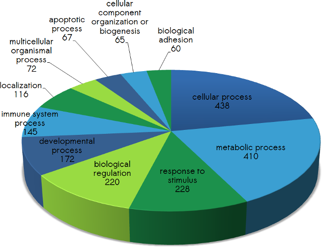 biological processes covered by protein array analysis